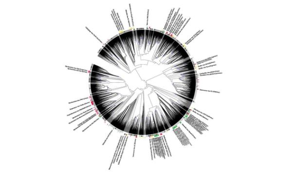 annotating metagenomes